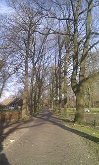 Oosterse Bos.jpg