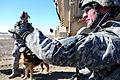 Operation Enduring Freedom DVIDS252536.jpg