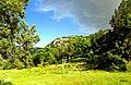 Orta kayadan kozağaç taşı - panoramio.jpg