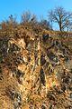 Přírodní památka U Strejčkova lomu 31.jpg