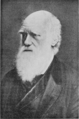 PSM V74 D338 Charles Darwin.png