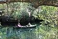 Paddling down the Ichetucknee River 3.jpg