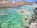 Pantelleria 12.jpg