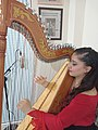 Paraguayan harp 1.jpg