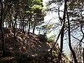 Parco del Cilento, calette nel Parco di Punta Licosa.jpg