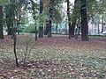 Park Miejski w Kielcach (51) (jw14).JPG