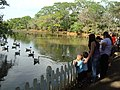 Parque Ecológico, Boituva - SP, Brazil - panoramio (1).jpg