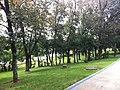 Parque da Cidade - Jundiaí - panoramio (46).jpg
