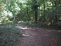 Path Junction on the Cotswold Way - geograph.org.uk - 986299.jpg