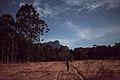 Patrimonio do matuto - serra do papagaio-13.jpg