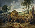 Paul de Vos - A lion and three wolves.jpg