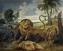 Asiatic lion - Wikipedia