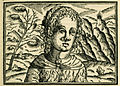 Peasant woman from Bulgaria with nose piercing that attracted the author's attention - Schweigger Salomon - 1608.jpg