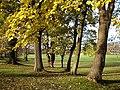 Penenden Heath - geograph.org.uk - 89457.jpg