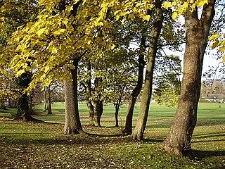 Penenden Heath village in United Kingdom