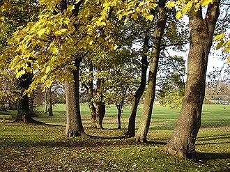 Penenden Heath - Image: Penenden Heath geograph.org.uk 89457