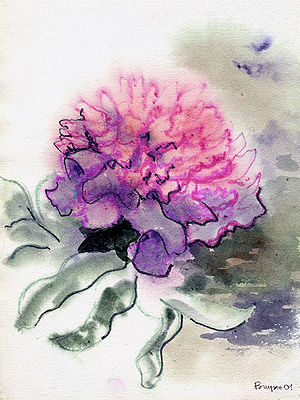 Watercolor Exhibit At Senior Center