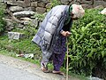 People and social life in Barot -an old Himachali woman on the way to her home near Barot.jpg