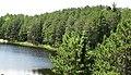 Percival Lake (Ontario, Canada) 10 (47656995292).jpg