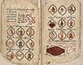 Persian Manuscript 373 Wellcome L0025426.jpg
