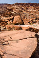 Petroglyphs - Map carvings (3689706981).jpg
