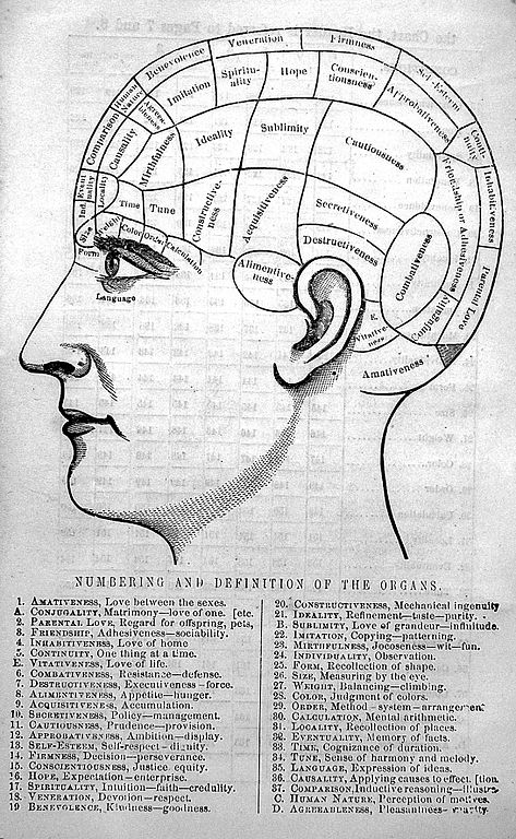 Psych Medications Chart: Phrenological chart Wellcome L0022607.jpg - Wikimedia Commons,Chart
