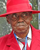 Pinetop Perkins -  Bild