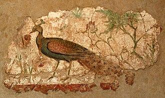 National Archaeological Museum of Tarragona - Image: Pintura amb paó