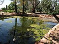 Pipe Springs National Monument, Arizona (18) (3734562930).jpg