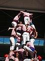 Plaça de Braus de Tarragona - Concurs 2012 P1410394.jpg