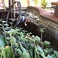 Plantmobile (14693567118).jpg