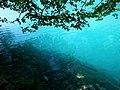 Plitvička jezera 0024.jpg