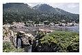 Point Lobos - panoramio.jpg