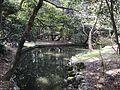 Pond of Miyazaki Shrine 4.jpg