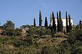 Porrera (19), ermita de Sant Antoni.jpg