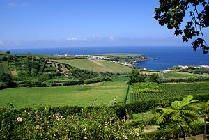Porto Formoso - The expanse of tea fields from the regional roadway looking towards the coastal community of Porto Formoso