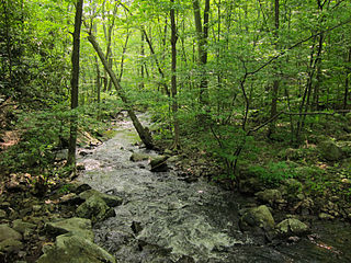 Ecoregion in the northeastern United States