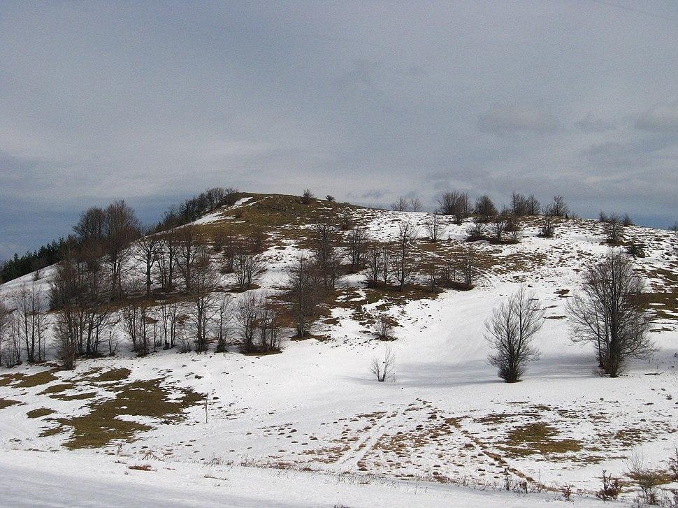 Povlen - zapadna Srbija - Srednji Povlen - Pogled prema vrhu Srednjeg Povlena