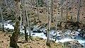 Praskalska river - panoramio (3).jpg