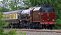 Princess Elizabeth 6201 Tyseley (7).jpg