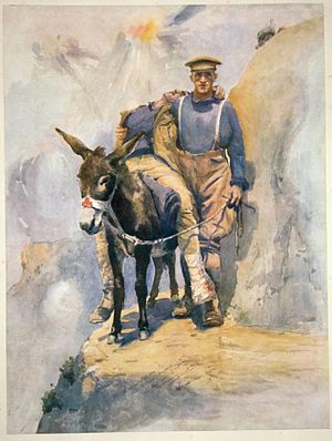 John Simpson Kirkpatrick - One of the paintings by Horace Moore depicting a man and a donkey, formerly thought to be a portrait of Simpson, now known to portray Henderson.