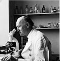 Professor P.C.C. Garnham with microscope Wellcome L0024386.jpg