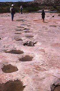Purgatoire River track site