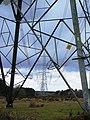 Pylons on the Fawley Inclosure. - geograph.org.uk - 381209.jpg