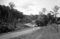 Queensland State Archives 1270 On the road from Yungaburra to Lake Barrine c 1935.png