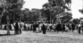 Queensland State Archives 328 The Refreshment Marquee Railway Picnic Nielson Park Burnett Shire 1931.png