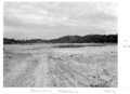 Queensland State Archives 6574 Reclamation Tallebudgera July 1959.png