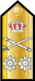 RHN-RAdm-shoulder.svg