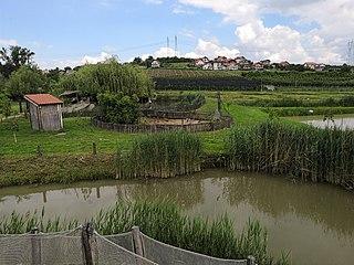 Radmilovac suburban settlement in Serbia
