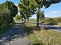 Radweg zwischen Edelfingen und Unterbalbach.jpg